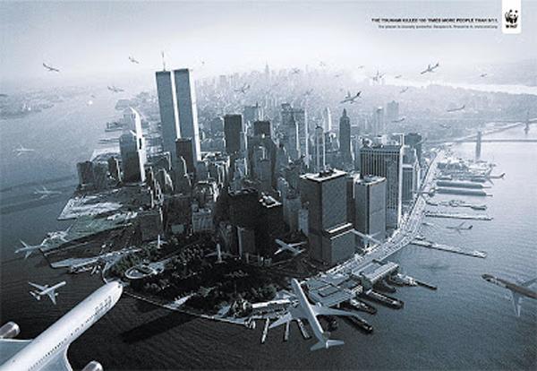 911-WWF-DBB